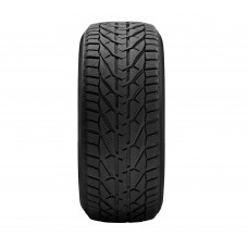 TAURUS WINTER 91 H 195/65 R15